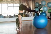 Young And Athletic Girl Using Fitness Ball In A Gym. Fitness Ball At Gym Workout Fitness And Pilates poster