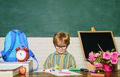 Boy From Primary School. Child In Classroom. Cute Kid Drawing At Desk. Schoolboy Near Blackboard In  poster