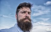 Man Bearded Hipster With Mustache Blue Sky Background. Expert Tips For Growing And Maintaining Musta poster