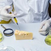 Food Safety Laboratory Procedure, Lab Assistant Makes A Shot In The Cheese. poster
