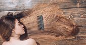 Woman With Beautiful Long Hair On Wooden Background. Long Hair. Beautiful Hair Coloring Woman. Fashi poster