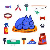 Pet Grooming Concept. Cute Sleeping Cat And Set Of Cats Accessories. Pet Shop Stuff, Care, Grooming, poster