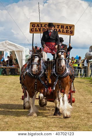 Vintage carriage pulled by clydesdale horses