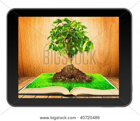 Tree on  open book with grass on wooden planks in black tablet like Ipade . Concept of growth of knowledge when you read books