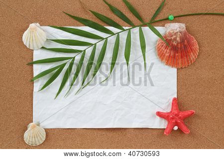 Background With Blank Crumpled Paper, Seashells, Palm Leave And Seashell