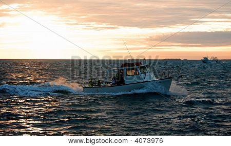 Key West 08 269 The Pelican