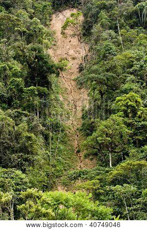 Landslide And Erosion In Jungle