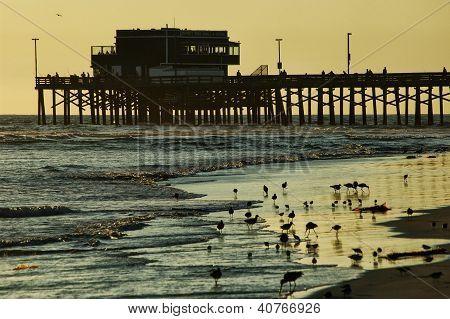 Beach pier evening