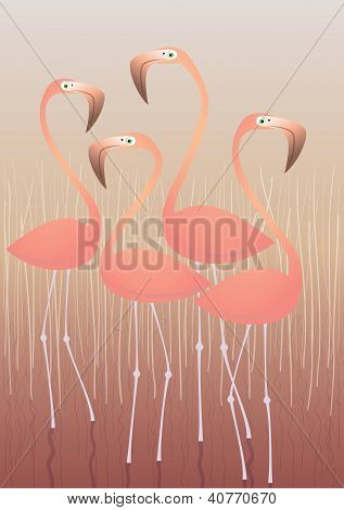 Four Flamingos