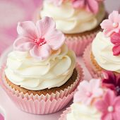 picture of sugarpaste  - Cupcakes - JPG