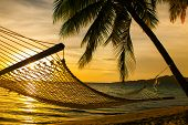 stock photo of pacific islands  - Hammock silhouette with palm trees on a beautiful beach at sunset - JPG