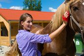 image of saddle-horse  - Young woman in the stable with horse and caring - JPG