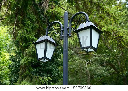 Lantern Of The Two Lights In The Trees.