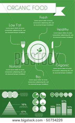 organic food inforgaphics on green