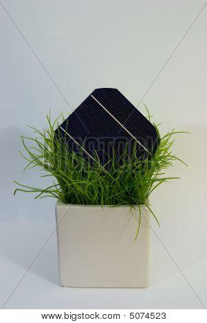 Solarcell In Flower Pot
