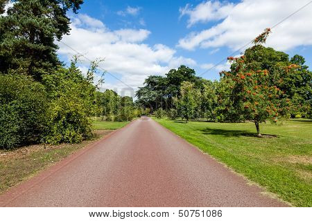 Path Leading Through Beautiful Summer Garden