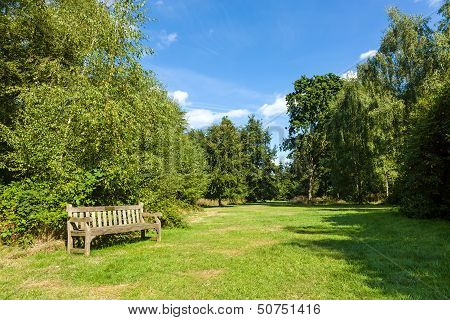 Park Bench In Beautiful Lush Green Garden