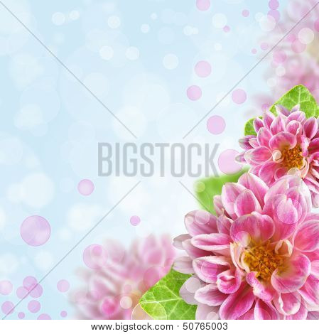 Beautiful Pink Flowers On Bokeh Background