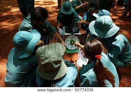 Worker in teamwork at rubber plantation