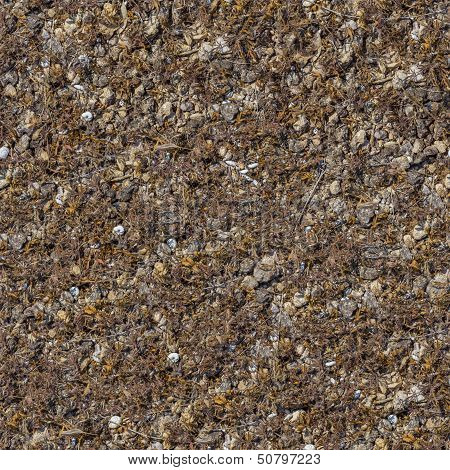Seamless Texture of Rocky Soil.