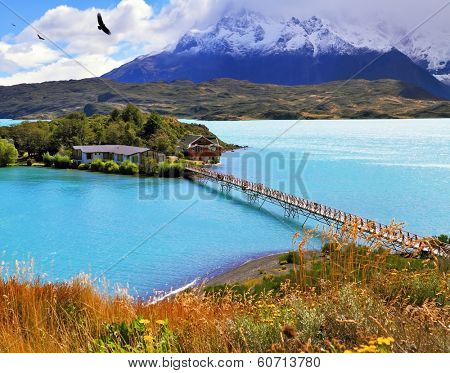 Picturesque little island in the lake Pehoe. Opened hotel on the island. Go to the hotel is an easy bridge. National Park Torres del Paine, Chile