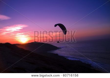 Free flight at sunset