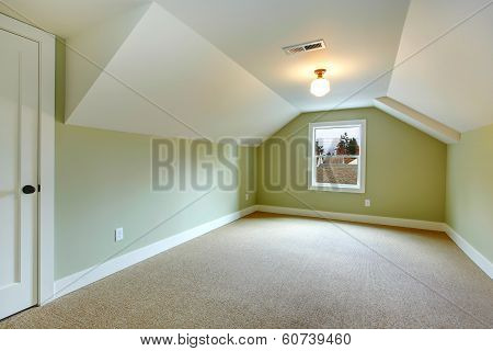 Empty Room With Green Walls And White Vaulted Ceiling