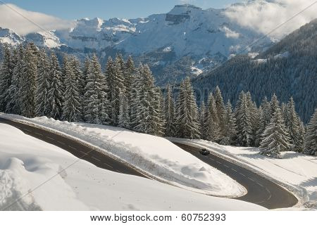 snowy mountain forest road