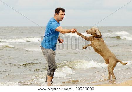 Man And Dog On Seacoast