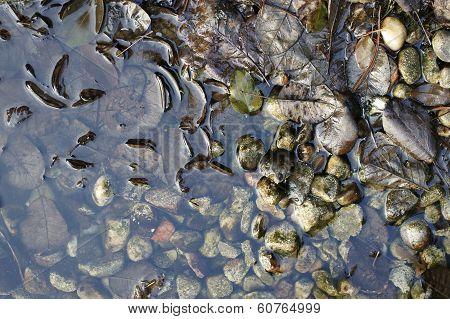 Stone garden pond in winter