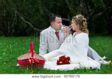 Bride And Groom On Wedding Picnic