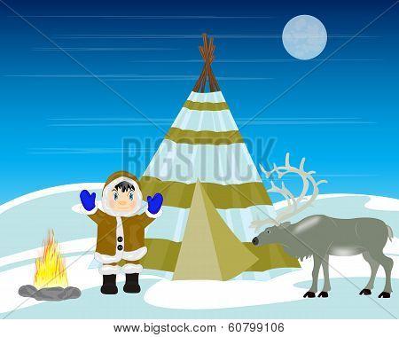 Reindeer breeder on north
