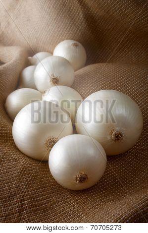White Selective Onions