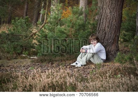Little Boy In A Pinewood Forest Sitting Among Pine Cones