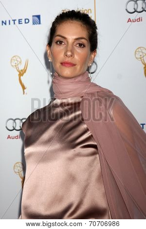 LOS ANGELES - AUG 23:  Dawn Olivieri at the Television Academy's Perfomers Nominee Reception at Pacific Design Center on August 23, 2014 in West Hollywood, CA