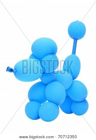 balloon animal poodle