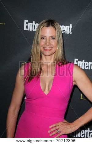 LOS ANGELES - AUG 23:  Mira Sorvino at the 2014 Entertainment Weekly Pre-Emmy Party at Fig & Olive on August 23, 2014 in West Hollywood, CA