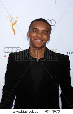 LOS ANGELES - AUG 23:  Donis Leonard Jr at the Television Academy's Perfomers Nominee Reception at Pacific Design Center on August 23, 2014 in West Hollywood, CA