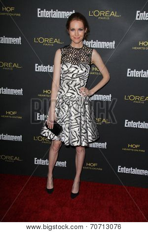 LOS ANGELES - AUG 23:  Darby Stanchfield at the 2014 Entertainment Weekly Pre-Emmy Party at Fig & Olive on August 23, 2014 in West Hollywood, CA