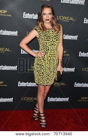 LOS ANGELES - AUG 23:  Bethany Joy Lenz at the 2014 Entertainment Weekly Pre-Emmy Party at Fig & Olive on August 23, 2014 in West Hollywood, CA