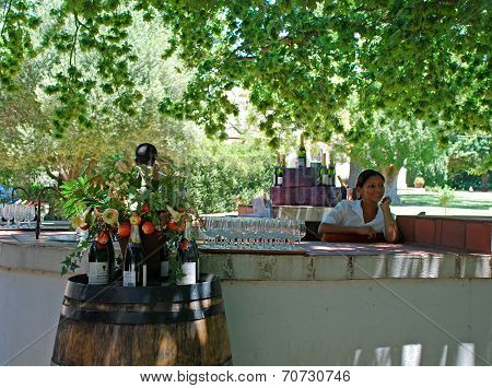 Wine Tasting On Scenary Wine Farm, South Africa