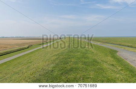 Lonely Dike In Groningen