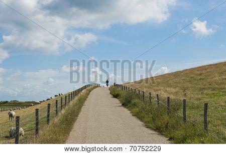 Road Dike Texel