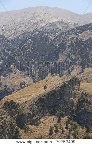 Cretan Landscape With Forest. Lakki Viewpoint