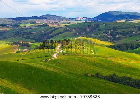 Typical summer rural landscape of San Quirico d Orcia