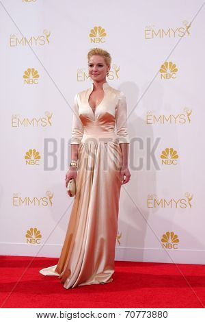LOS ANGELES - AUG 25:  Katherine Heigl at the 2014 Primetime Emmy Awards - Arrivals at Nokia Theater at LA Live on August 25, 2014 in Los Angeles, CA