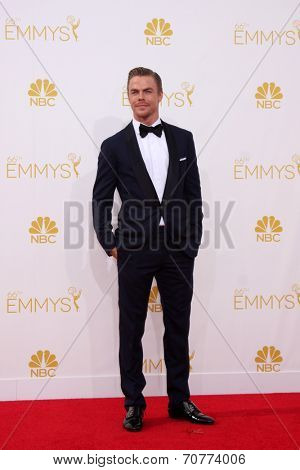 LOS ANGELES - AUG 25:  Derek Hough at the 2014 Primetime Emmy Awards - Arrivals at Nokia Theater at LA Live on August 25, 2014 in Los Angeles, CA