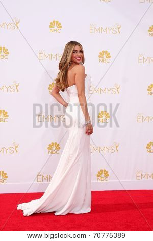 LOS ANGELES - AUG 25:  Sophia Vergara at the 2014 Primetime Emmy Awards - Arrivals at Nokia Theater at LA Live on August 25, 2014 in Los Angeles, CA