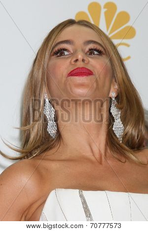 LOS ANGELES - AUG 25:  Sofia Vergara at the 2014 Primetime Emmy Awards - Press Room at Nokia Theater at LA Live on August 25, 2014 in Los Angeles, CA