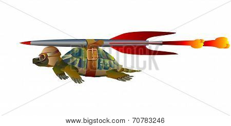 Terrapin In Flight